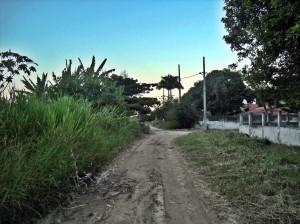 Ruas abandonadas em Ponta Grossa. Mato, buracos e lama. (Foto: João Henrique | Maricá Info)
