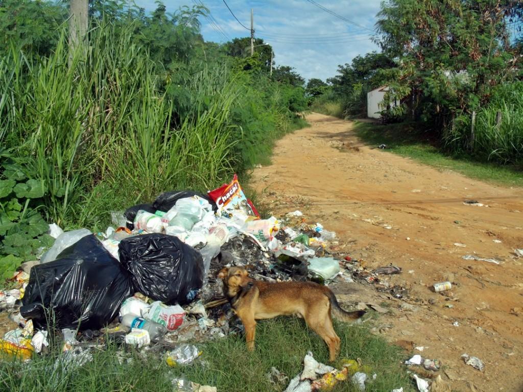Lixo nas ruas pode se tornar um risco para a saúde. (Foto: João Henrique | Maricá Info)