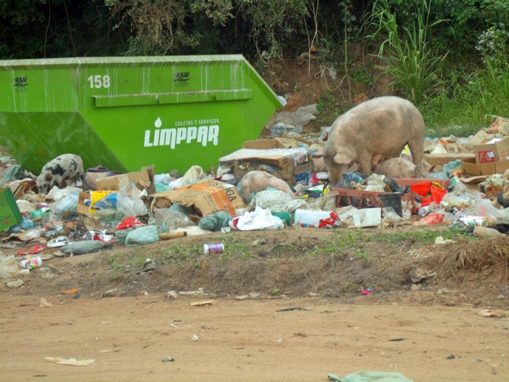 Lixão da 90 aumenta a cada dia. Coleta de lixe é irregular na região, dizem moradores. (Foto: João Henrique | Maricá Info)
