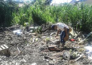 Agentes de endemias vistoriam terrenos baldios, casas e obras em busca de focos de Dengue.
