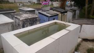 Local com água acumulada pode conter focos do mosquito Aedes Aegypti.