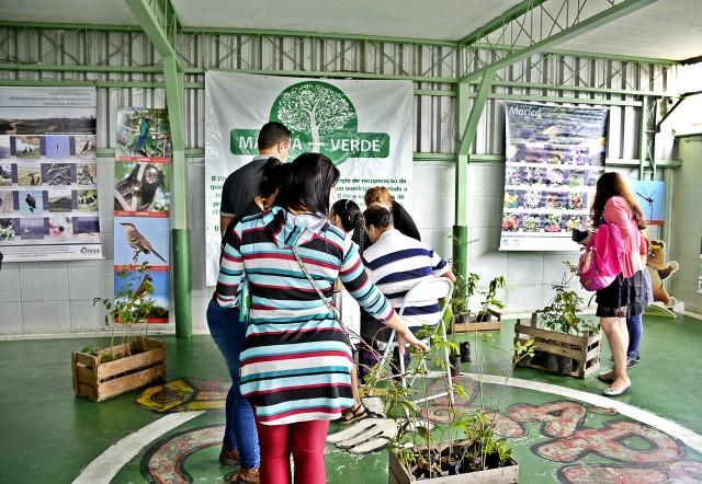 Maricá + Verde distribui mudas em feira de escola em Itaipuaçu