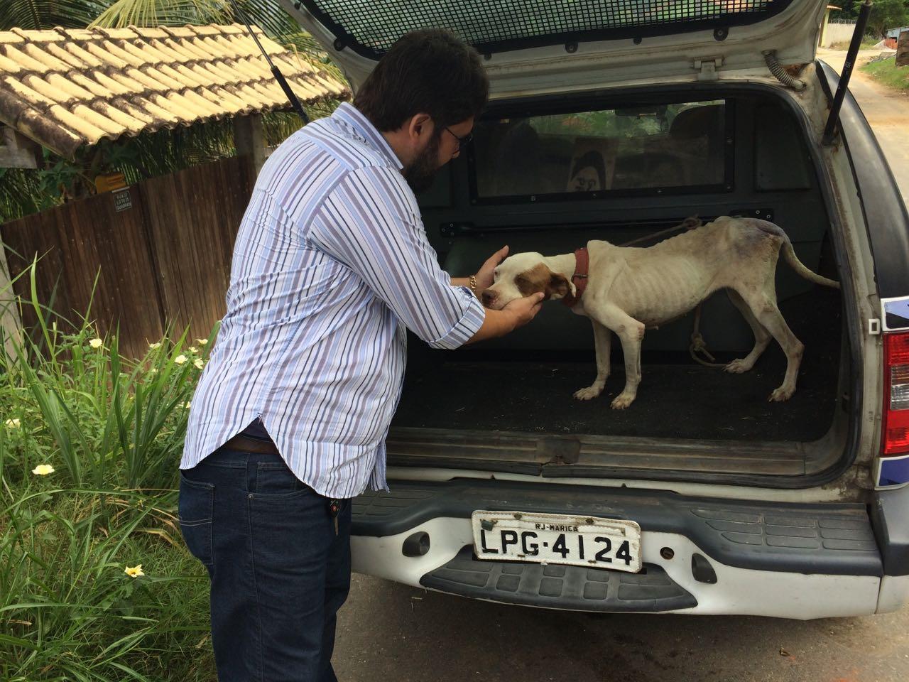 Agentes da Guarda resgatam animal que sofria maus-tratos em Maricá