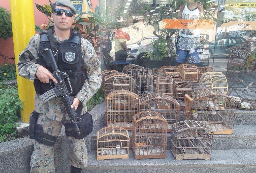 Polícia Ambiental apreende pássaros silvestres em Maricá